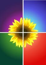 logo_mathbio2013_petit.jpg